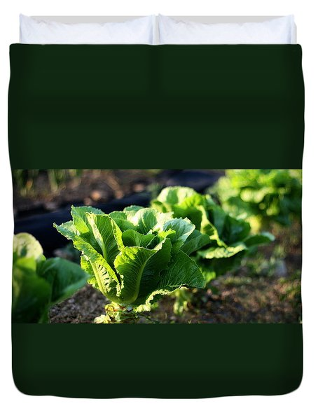 Row Of Romaine Duvet Cover by Angela Rath
