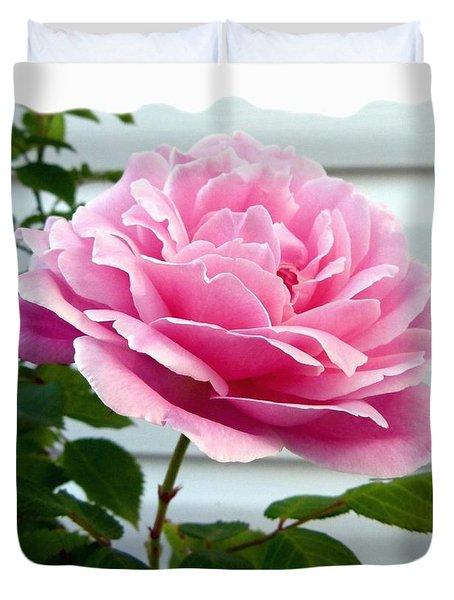 Royal Kate Rose Duvet Cover by Will Borden