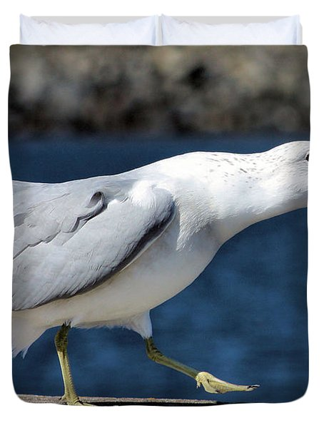 Ruffled Feathers Duvet Cover by Kristin Elmquist