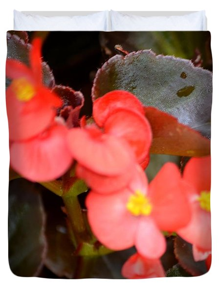 Salmon Begonia Duvet Cover by Maria Urso