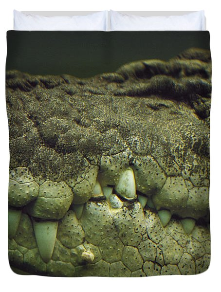 Saltwater Crocodile Teeth Duvet Cover by Cyril Ruoso