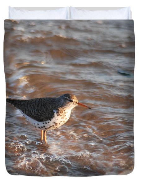 Sandpiper 4966 Duvet Cover by Michael Peychich