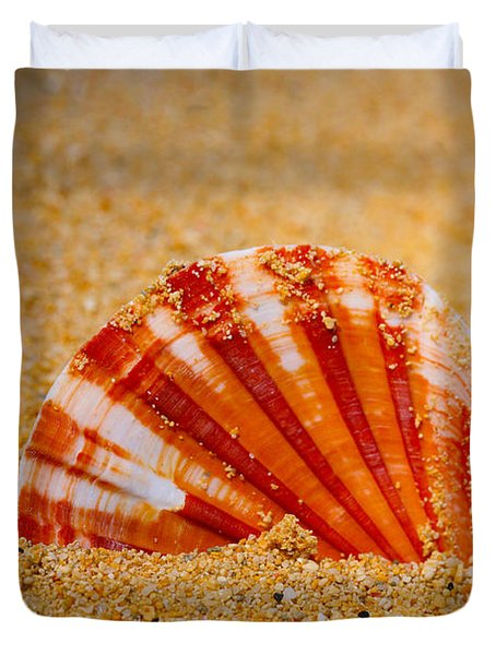 Scallop Shell Duvet Cover by Cheryl Young