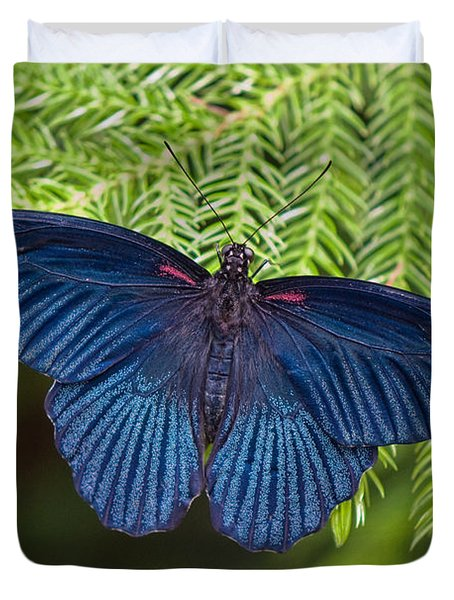 Scarlet Swallowtail Duvet Cover by Joann Vitali