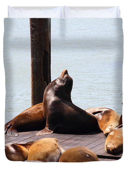 Sea Lions At Pier 39 San Francisco California . 7D14314 Duvet Cover by Wingsdomain Art and Photography