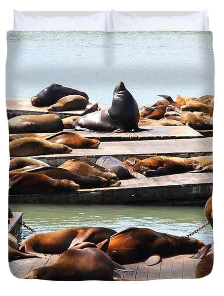 Sea Lions At Pier 39 San Francisco California . 7D14316 Duvet Cover by Wingsdomain Art and Photography