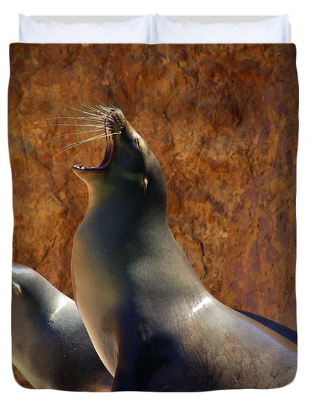 Sea Lions Duvet Cover by Carlos Caetano