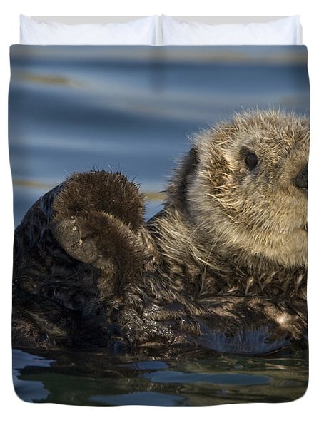 Sea Otter Monterey Bay California Duvet Cover by Suzi Eszterhas