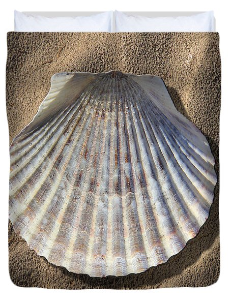 Sea Shell 2 Duvet Cover by Mike McGlothlen