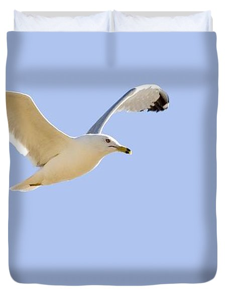 Seagull In Flight Duvet Cover by Don Hammond