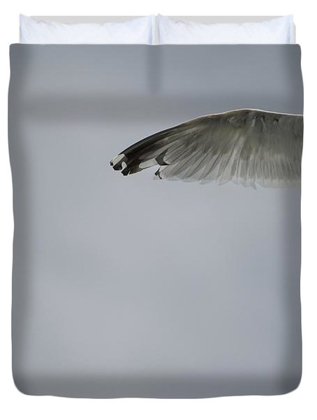 Seagull Duvet Cover by Keith Levit