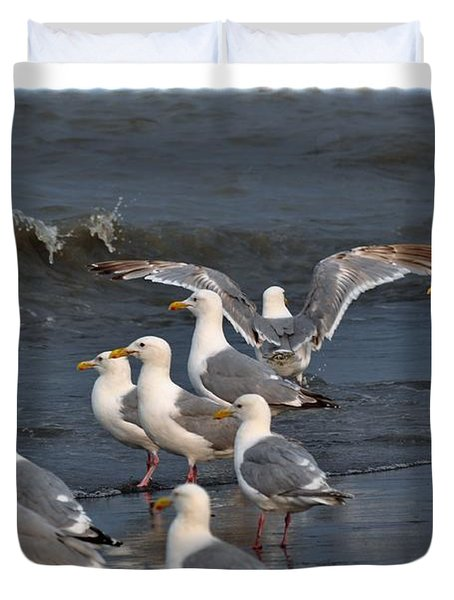 Seagulls Gathering Duvet Cover by Debra  Miller