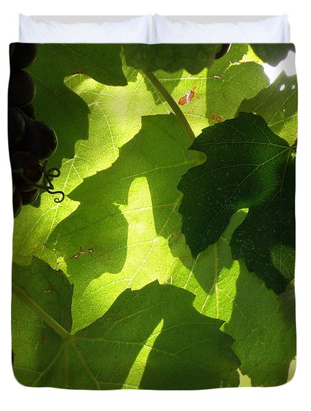 Shadow Dancing Grapes Duvet Cover by Lainie Wrightson