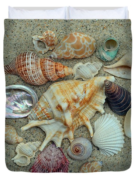 Shell Collection 2 Duvet Cover by Sandi OReilly