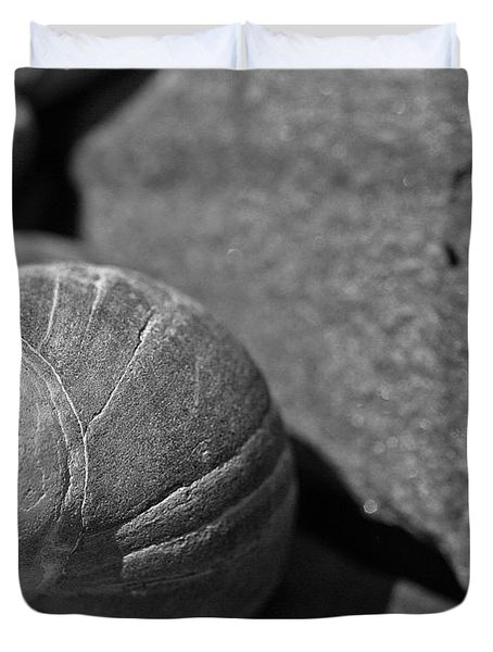 Shells II Duvet Cover by David Rucker