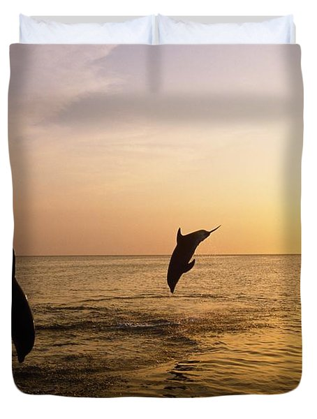 Silhouette Of Bottlenose Dolphins Duvet Cover by Natural Selection Craig Tuttle