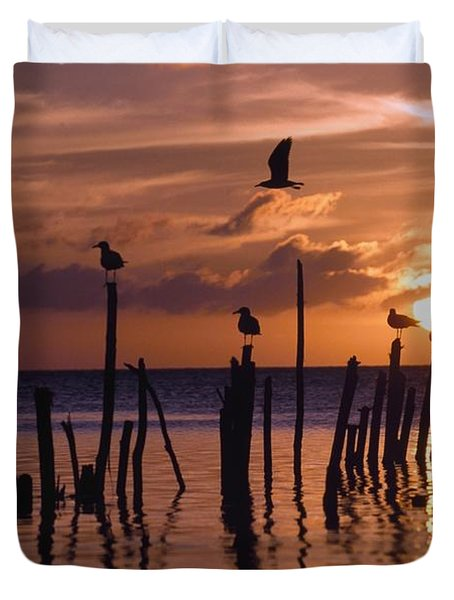 Silhouette Of Seagulls On Posts In Sea Duvet Cover by Axiom Photographic