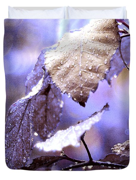 Silver Rain. The Garden Of Dreams Duvet Cover by Jenny Rainbow