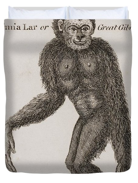 Simia Lar, Great Gibbon. Engraved By Duvet Cover by Ken Welsh