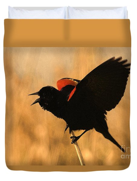 Singing At Sunset Duvet Cover by Betty LaRue
