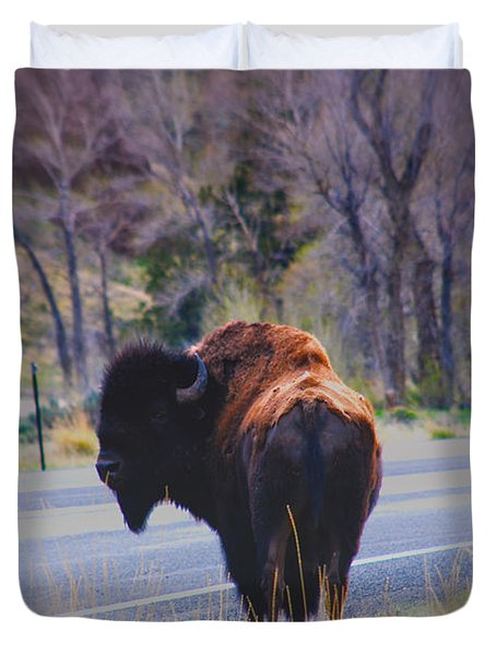 Single Buffalo in Yellowstone NP Duvet Cover by Susanne Van Hulst