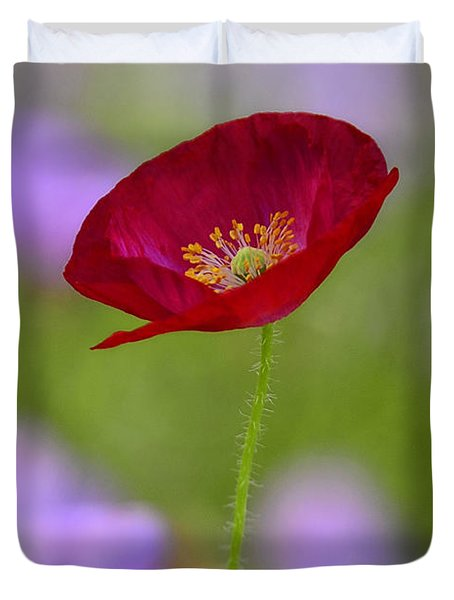 Single Red Poppy  Duvet Cover by Saija  Lehtonen