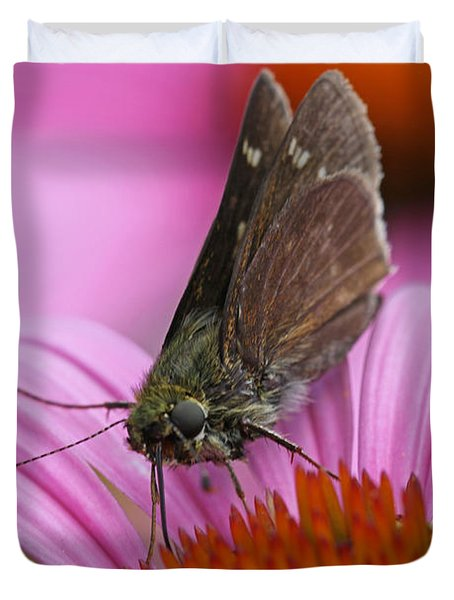 Skipper Moth Macro Photography Duvet Cover by Juergen Roth