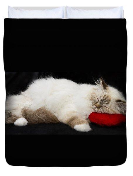 Sleeping Birman Duvet Cover by Melanie Viola