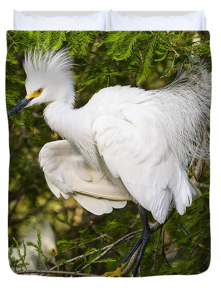 Snowy Egret In Breeding Plumage Duvet Cover by Bill Swindaman