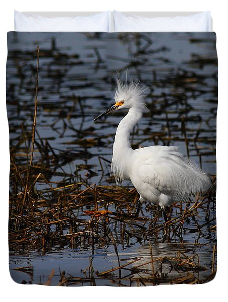 Snowy Egret . Solitude . 7d11963 Duvet Cover by Wingsdomain Art and Photography