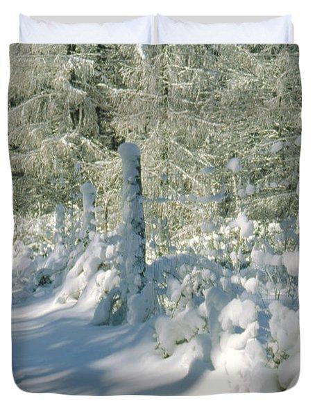 Snowy Footpath In Winter Wonderland Duvet Cover by Heiko Koehrer-Wagner