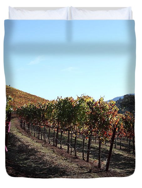 Sonoma Vineyards - Sonoma California - 5D19311 Duvet Cover by Wingsdomain Art and Photography