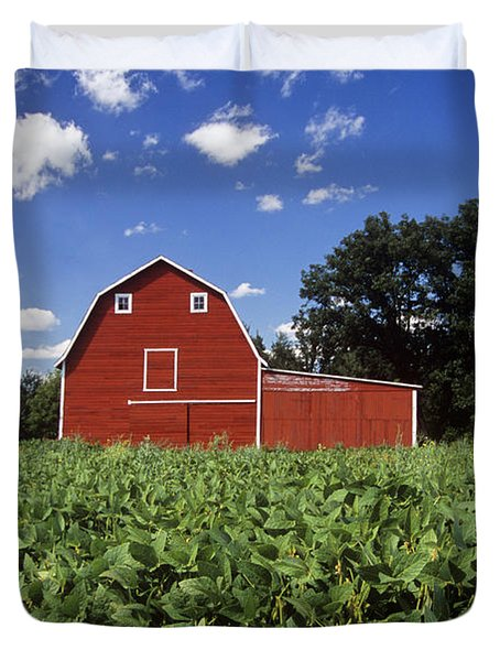 Soybean Field And Red Barn Near Anola Duvet Cover by Dave Reede