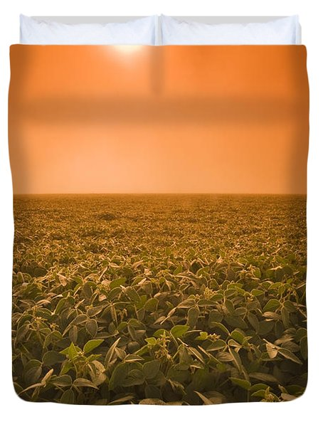 Soybean Field On A Misty Morning Duvet Cover by Dave Reede