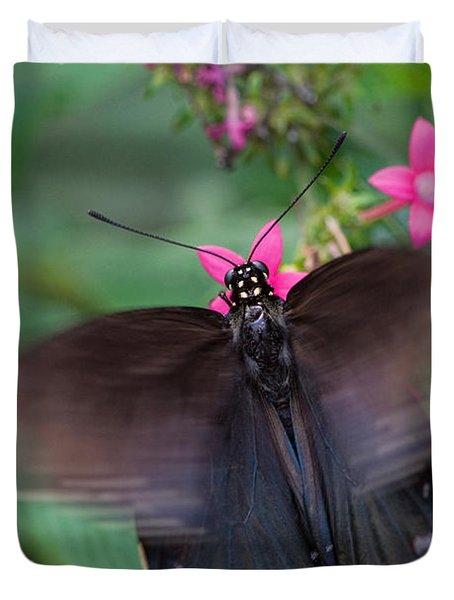 Spicebush Swallowtail Duvet Cover by Joann Vitali