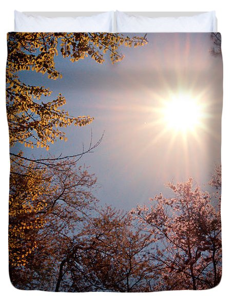 Spring Sunlight over Cherry Blossoms  Duvet Cover by Vivienne Gucwa