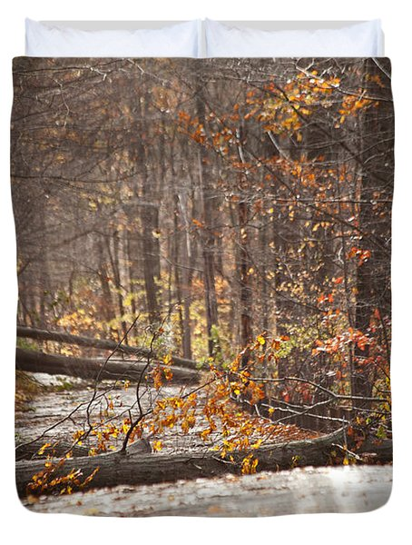 Stormy Autumn Duvet Cover by Karol Livote