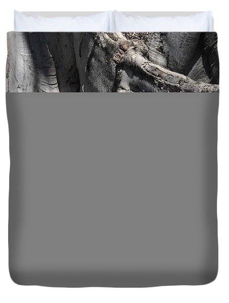 Strong Roots in Florida Duvet Cover by Carol Groenen