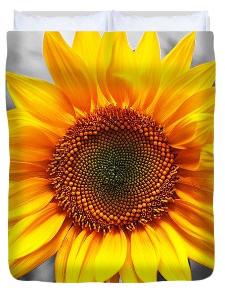 Sunflowers 3 Duvet Cover by Sumit Mehndiratta