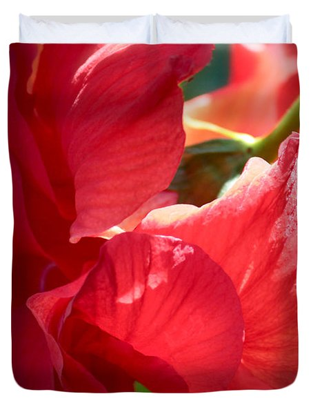 Sunlight On Red Hibiscus Duvet Cover by Carol Groenen