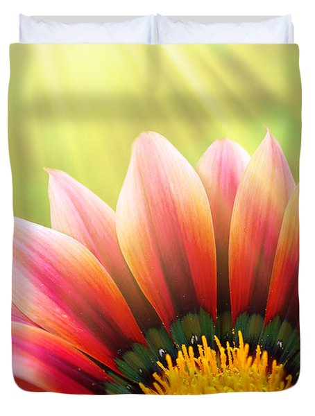 Sunny Daisy Duvet Cover by Carlos Caetano