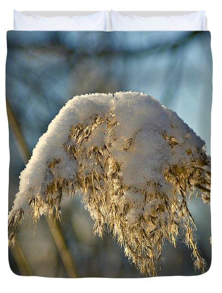 Sunny Day Snow Fall On The Bull Rushes Duvet Cover by LeeAnn McLaneGoetz McLaneGoetzStudioLLCcom