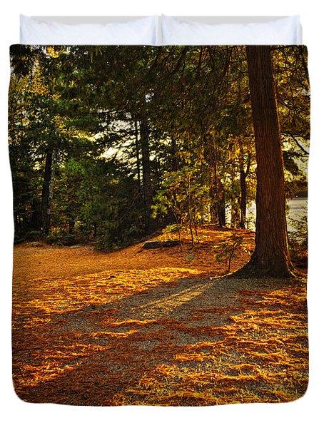 Sunset In Woods At Lake Shore Duvet Cover by Elena Elisseeva