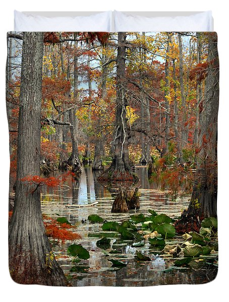 Swamp In Fall Duvet Cover by Marty Koch