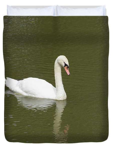 Swan Looking At Reflection Duvet Cover by Corinne Elizabeth Cowherd
