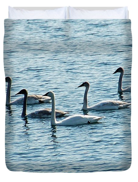 Swans Swimming Duvet Cover by Aimee L Maher Photography and Art Visit ALMGallerydotcom