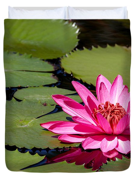 Sweet Pink Water Lily In The River Duvet Cover by Sabrina L Ryan