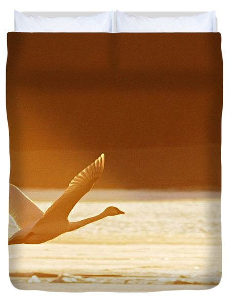 Takeoff At Sunset Duvet Cover by Larry Ricker