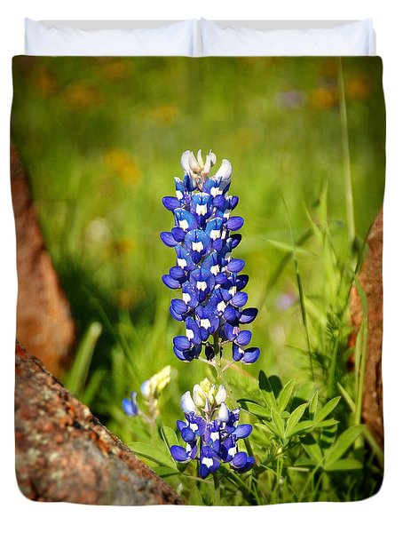 Texas Bluebonnet Duvet Cover by Jon Holiday