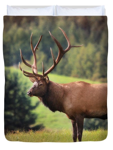 The King of Winslow Hill Duvet Cover by Lori Deiter